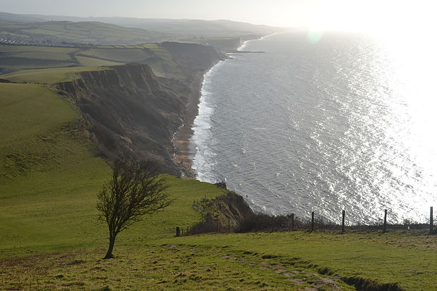 Bridport, South Coast Path, Anglia